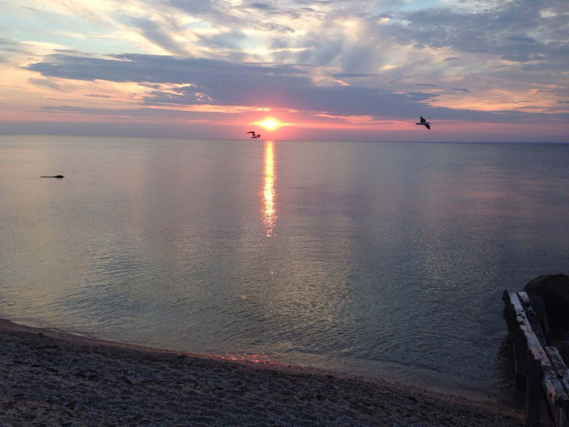 Joanna Shirin - Long Island Sound